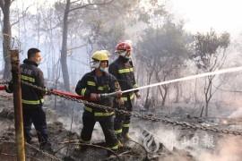 广东佛山发生山火最新进展其原因竟如此让人震惊!