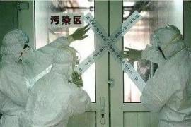 武汉市场野味菜单流出首个新型冠状病毒感染的肺炎竟然因为这种动物