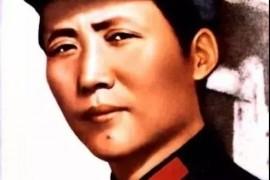 由于不信任毛泽东,我们付出了多少代价?